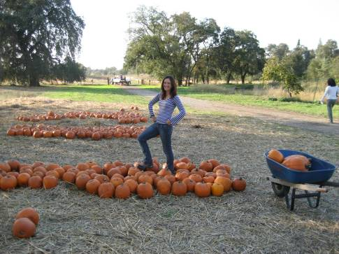 Heather and the Great Pumpkins  (or not so great)